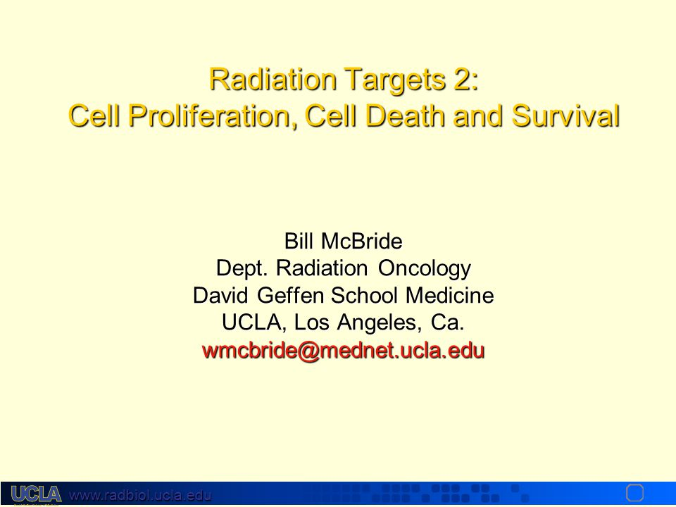 Radiation Targets 2: Cell Proliferation, Cell Death and Survival Bill McBride Dept. Radiation Oncology David Geffen School Medicine UCLA, Los Angeles, Ca. wmcbride@mednet.ucla.edu