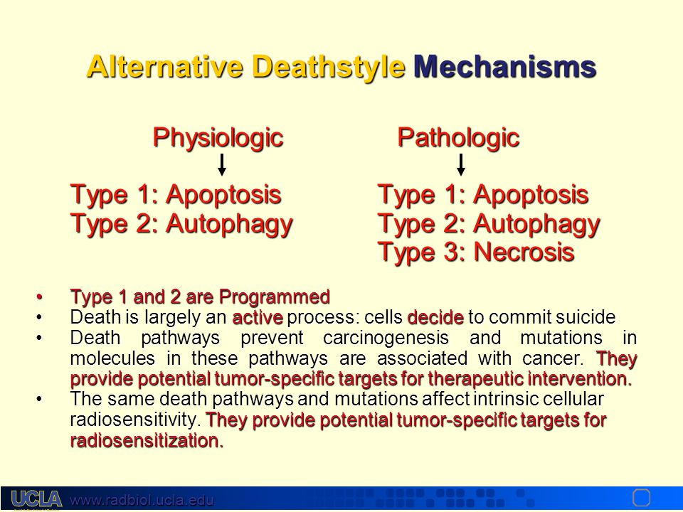 Alternative Deathstyle Mechanisms