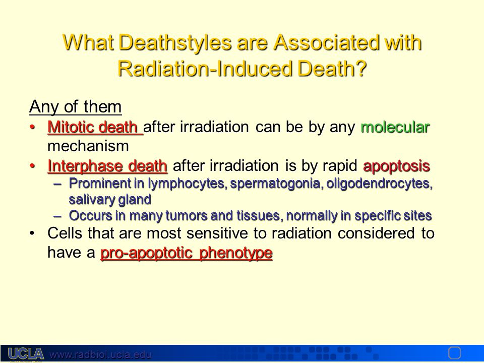 What Deathstyles are Associated with Radiation-Induced Death