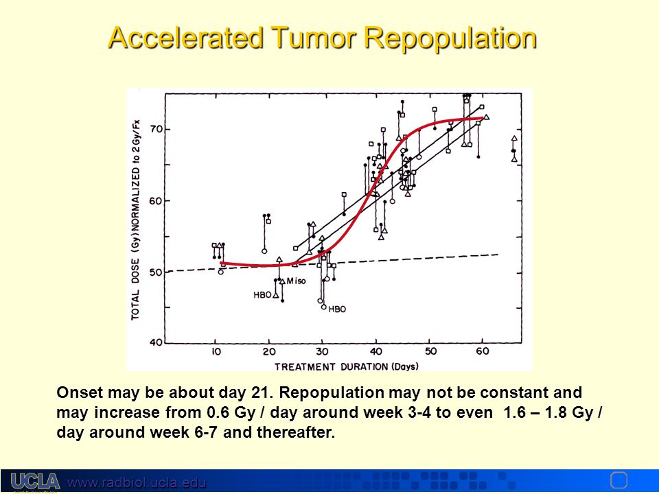 Accelerated Tumor Repopulation