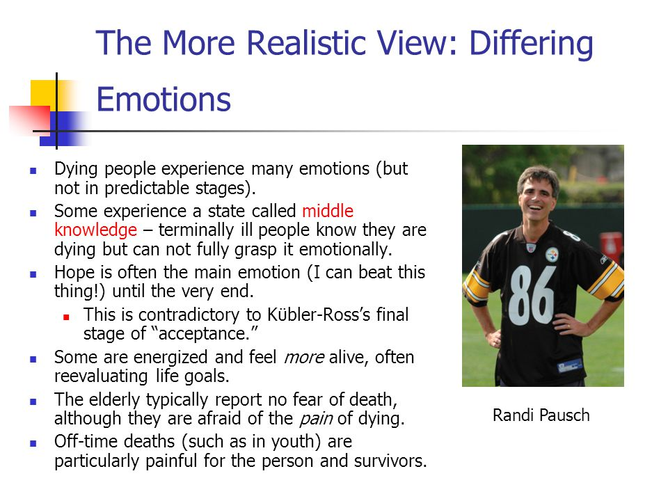 The More Realistic View: Differing Emotions