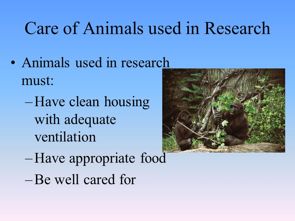 Care of Animals used in Research