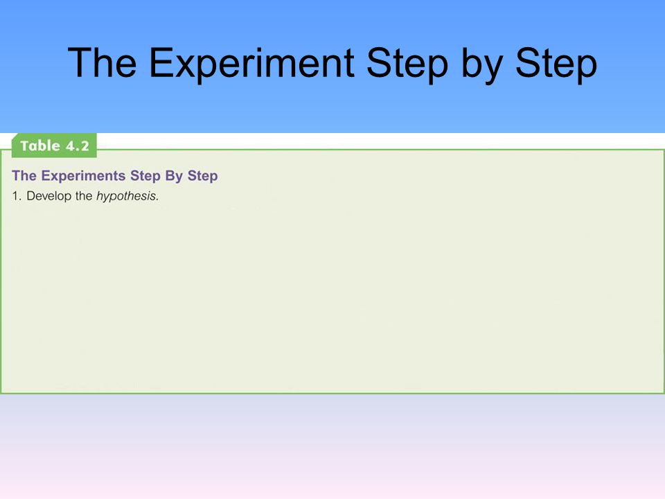 The Experiment Step by Step