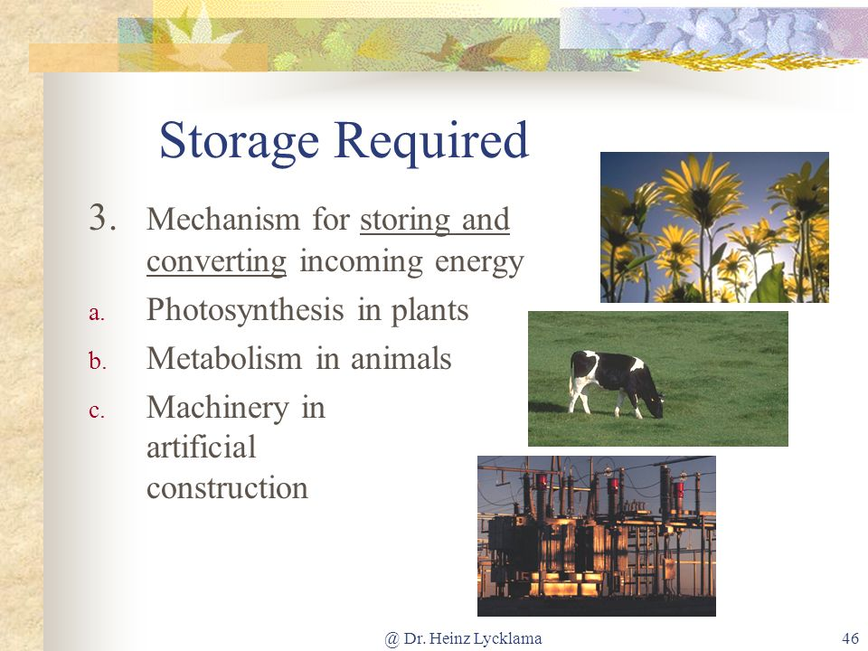 Storage Required 3. Mechanism for storing and converting incoming energy. Photosynthesis in plants.