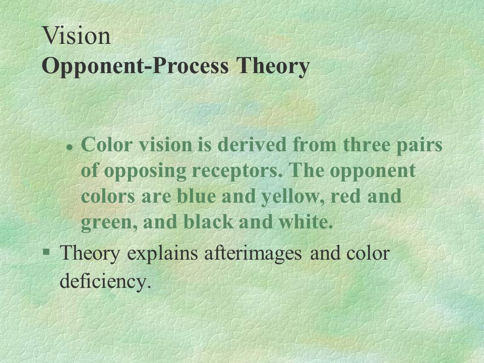 Vision Opponent-Process Theory