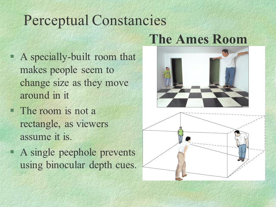 Perceptual Constancies The Ames Room