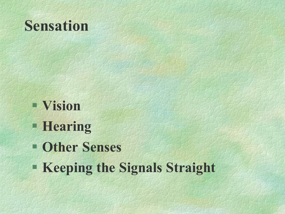 Sensation Vision Hearing Other Senses Keeping the Signals Straight