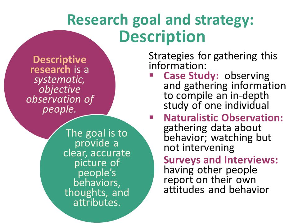 Research goal and strategy: Description