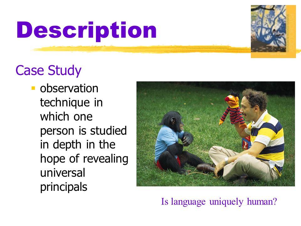 Description Case Study