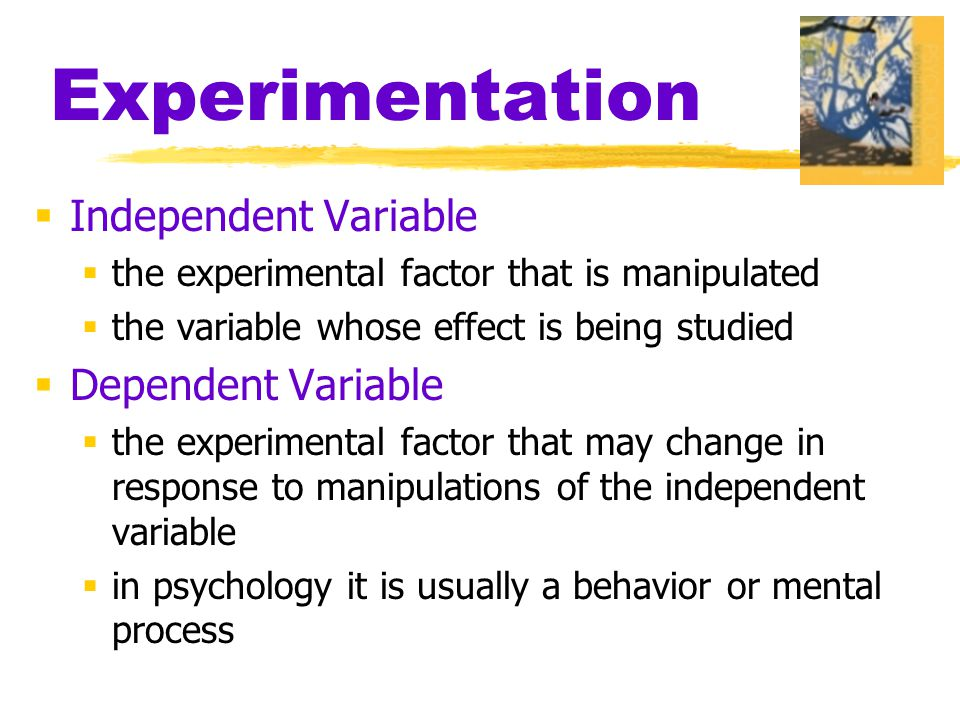 Experimentation Independent Variable Dependent Variable