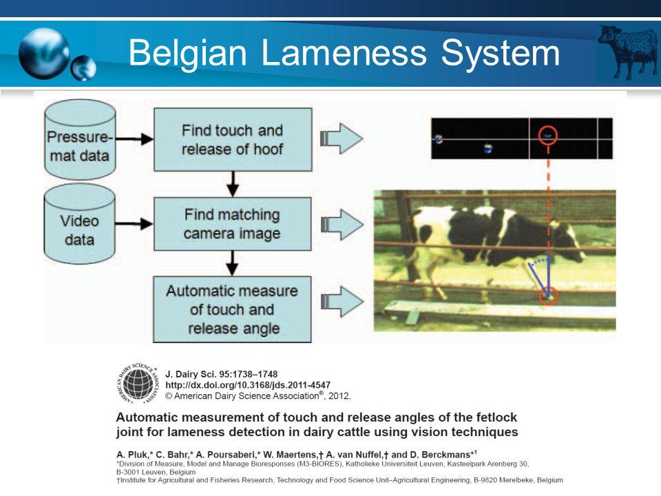 Belgian Lameness System