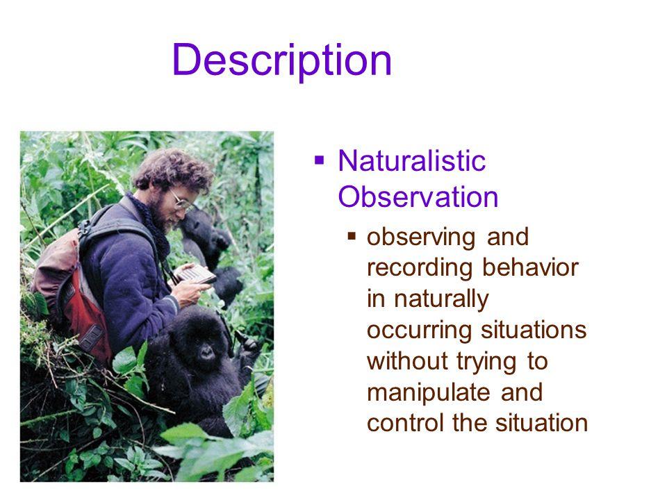 Description Naturalistic Observation