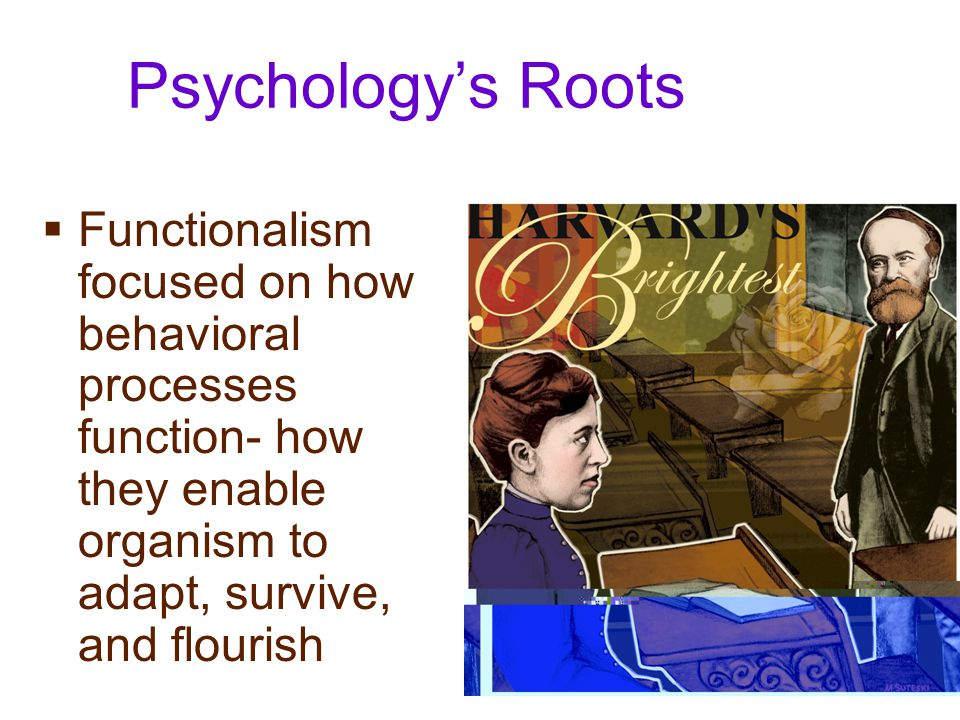 Psychology's Roots Functionalism focused on how behavioral processes function- how they enable organism to adapt, survive, and flourish.