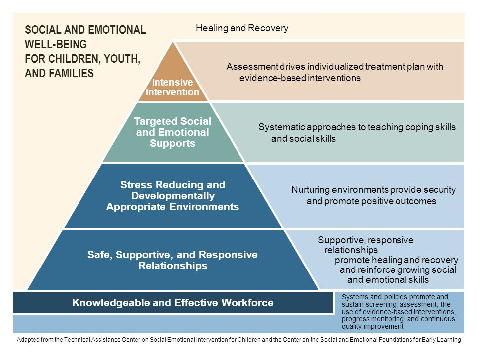SOCIAL AND EMOTIONAL WELL-BEING FOR CHILDREN, YOUTH, AND FAMILIES