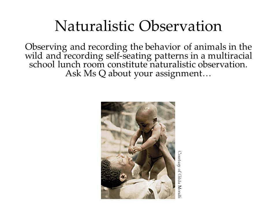 Naturalistic Observation