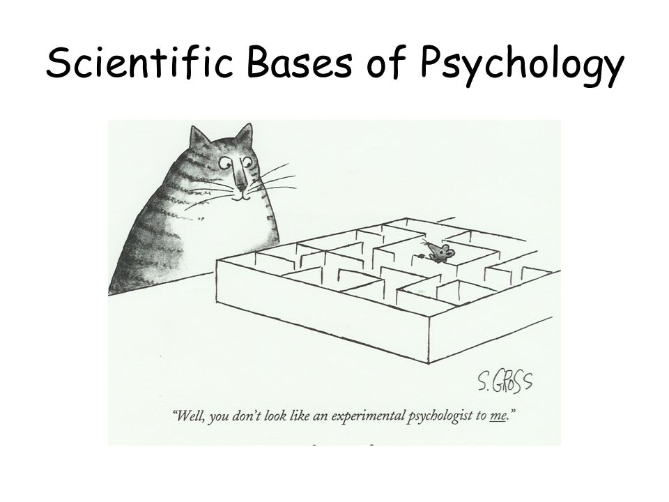 Scientific Bases of Psychology