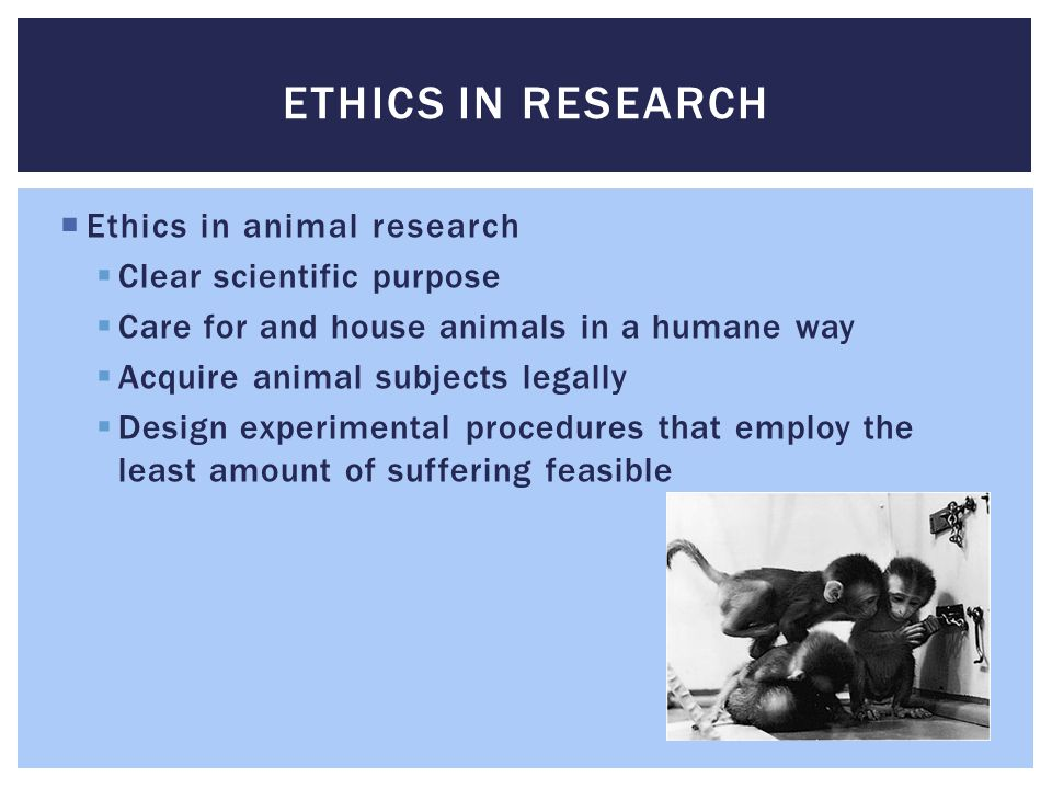 Ethics in Research Ethics in animal research Clear scientific purpose
