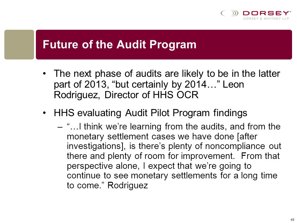 Future of the Audit Program