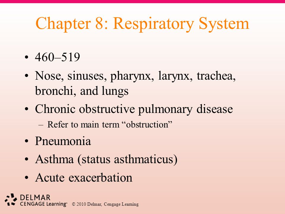 Chapter 8: Respiratory System