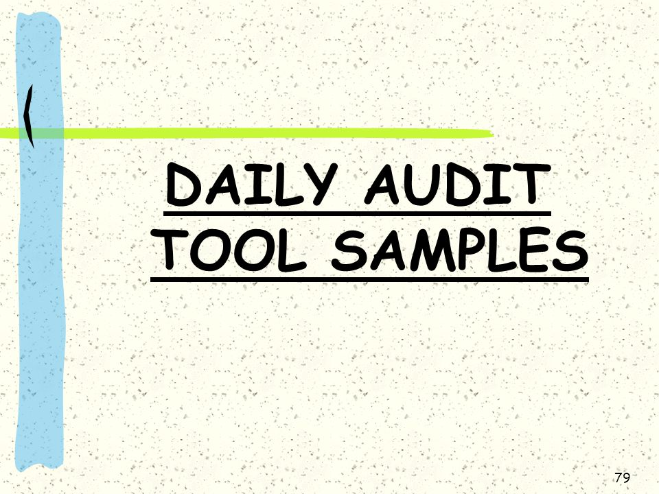 DAILY AUDIT TOOL SAMPLES