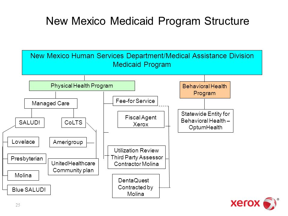 New Mexico Medicaid Program Structure