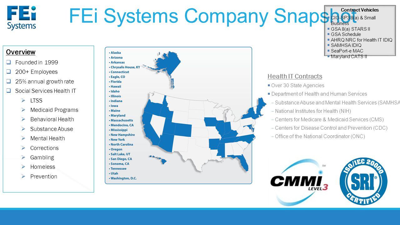 FEi Systems Company Snapshot