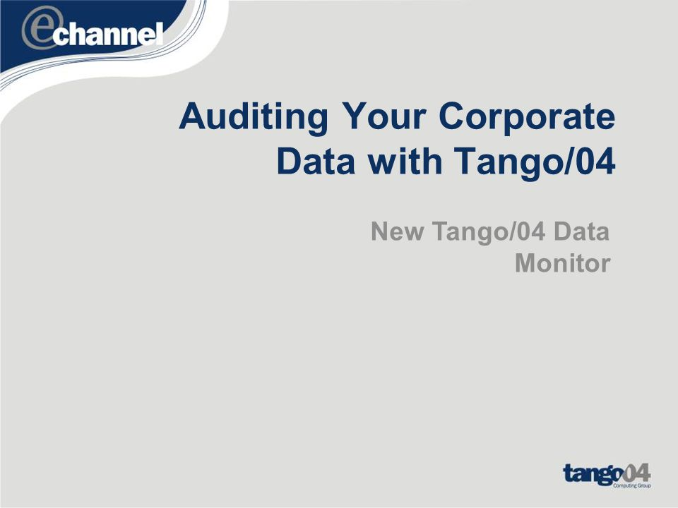 Auditing Your Corporate Data with Tango/04
