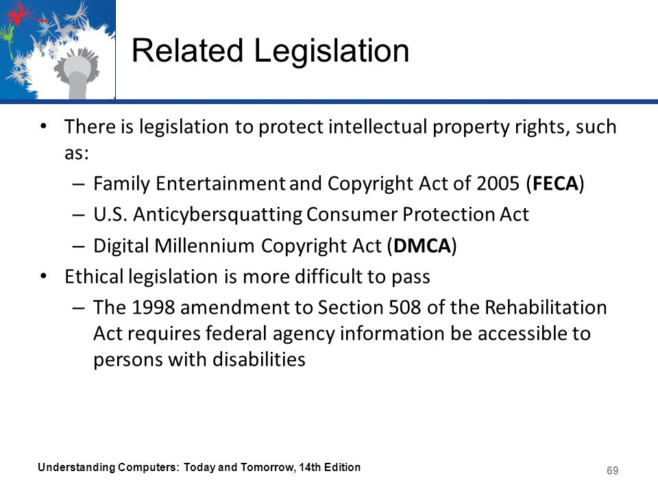 Related Legislation There is legislation to protect intellectual property rights, such as: Family Entertainment and Copyright Act of 2005 (FECA)