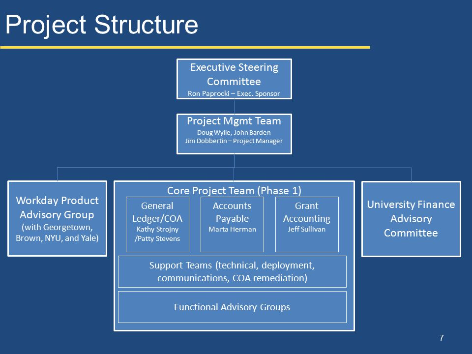 Project Structure Executive Steering Committee Project Mgmt Team