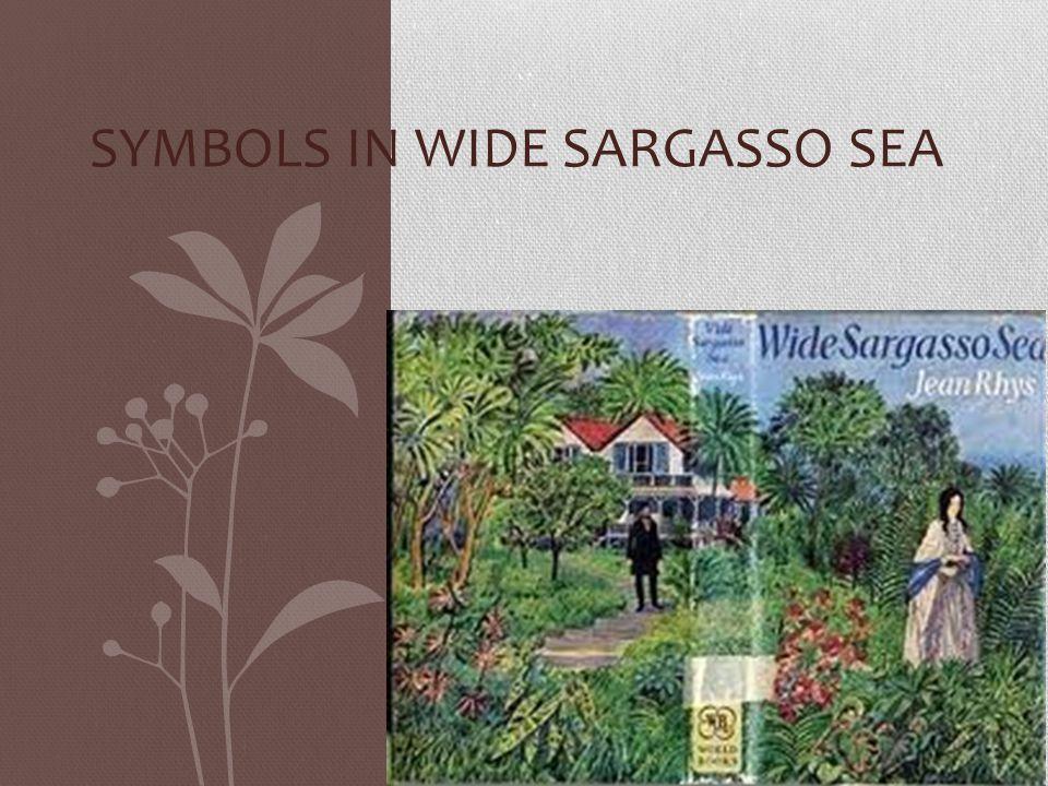 Symbols in Wide Sargasso Sea