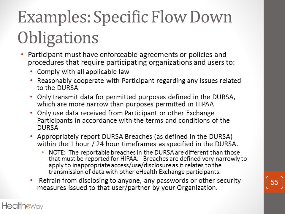 Examples: Specific Flow Down Obligations