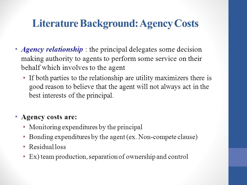 Literature Background: Agency Costs