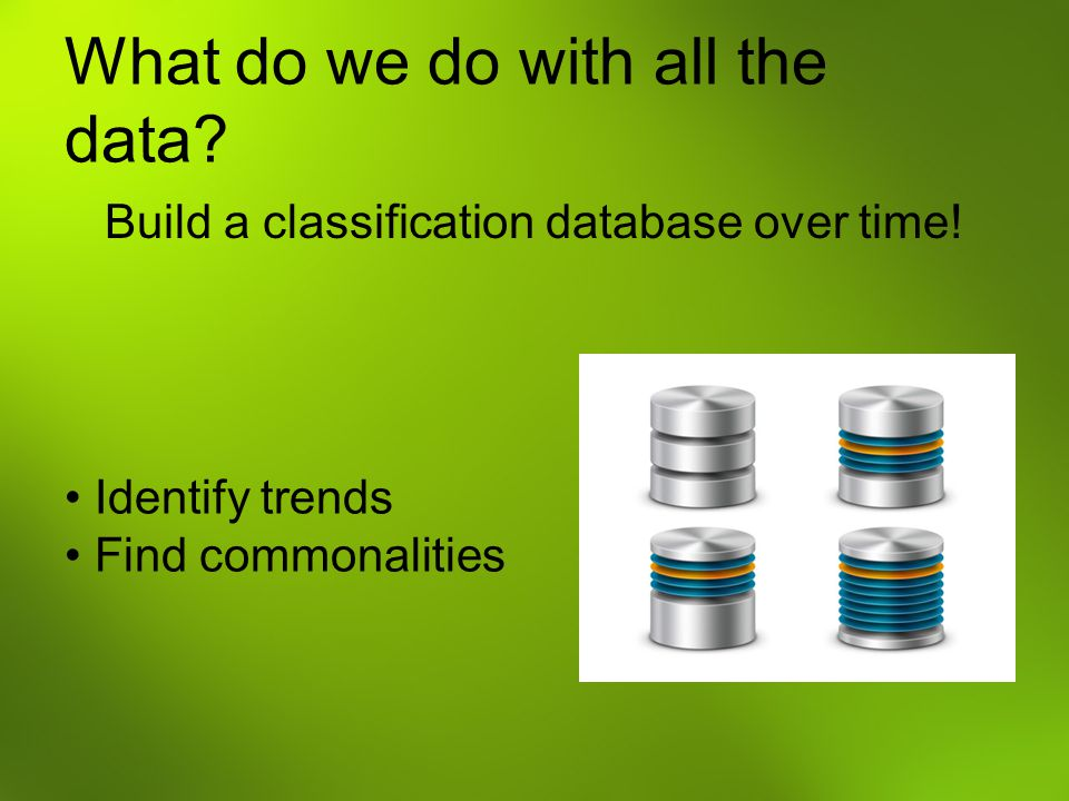What do we do with all the data