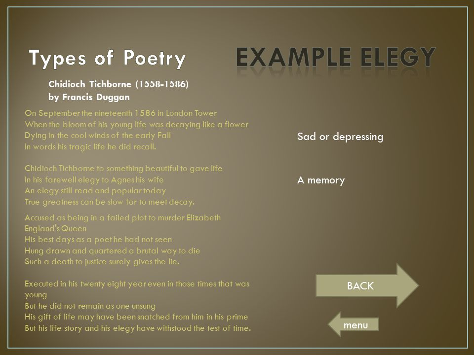 EXAMPLE ELEGY Types of Poetry Sad or depressing A memory BACK menu