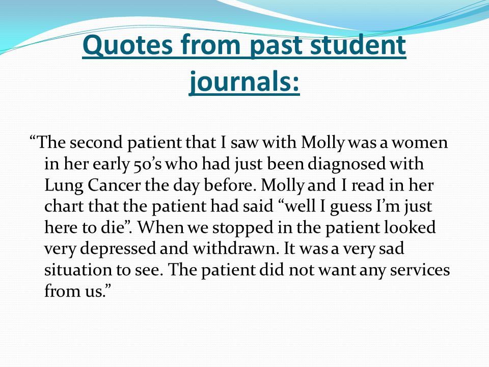 Quotes from past student journals:
