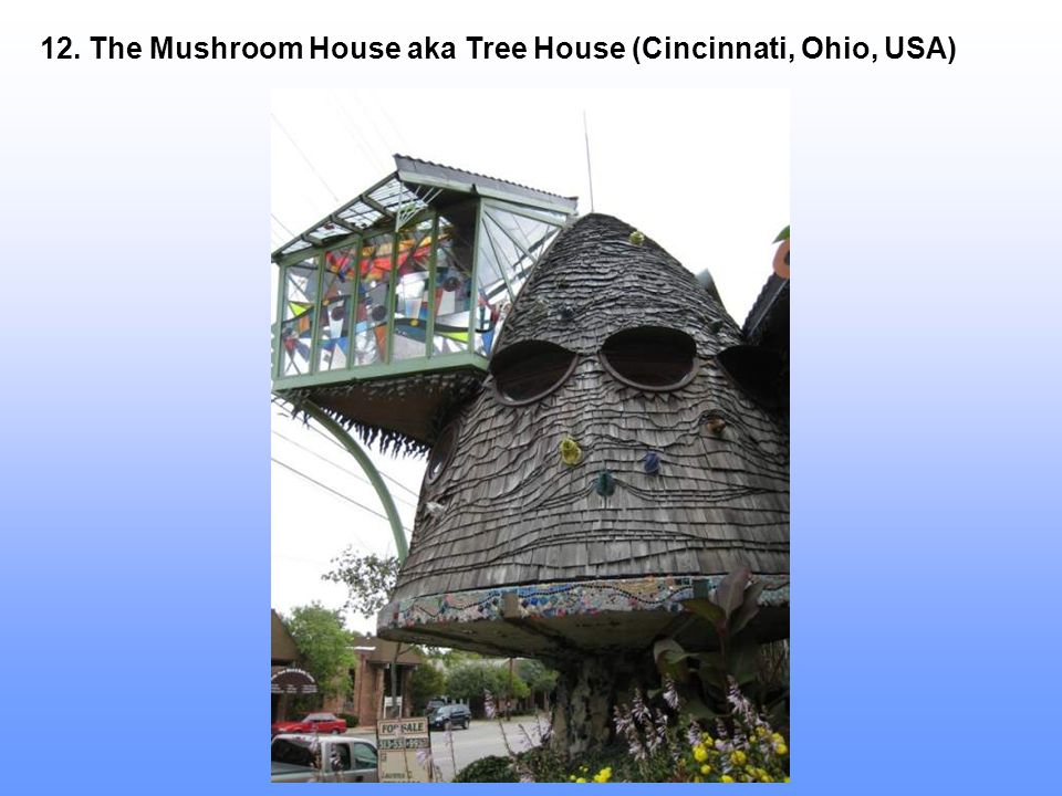 12. The Mushroom House aka Tree House (Cincinnati, Ohio, USA)
