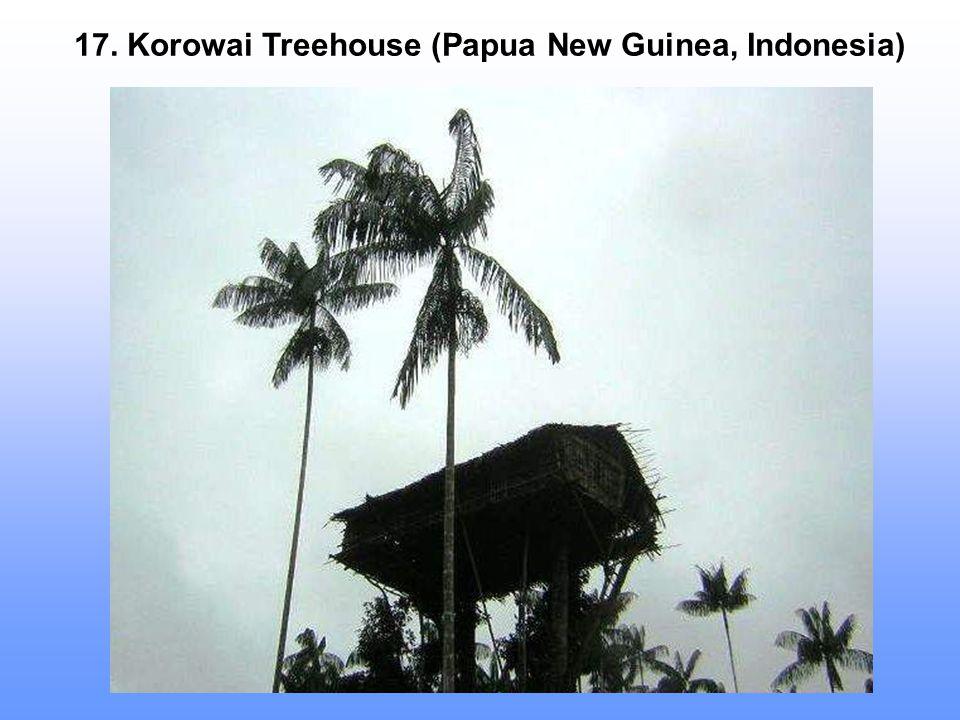17. Korowai Treehouse (Papua New Guinea, Indonesia)