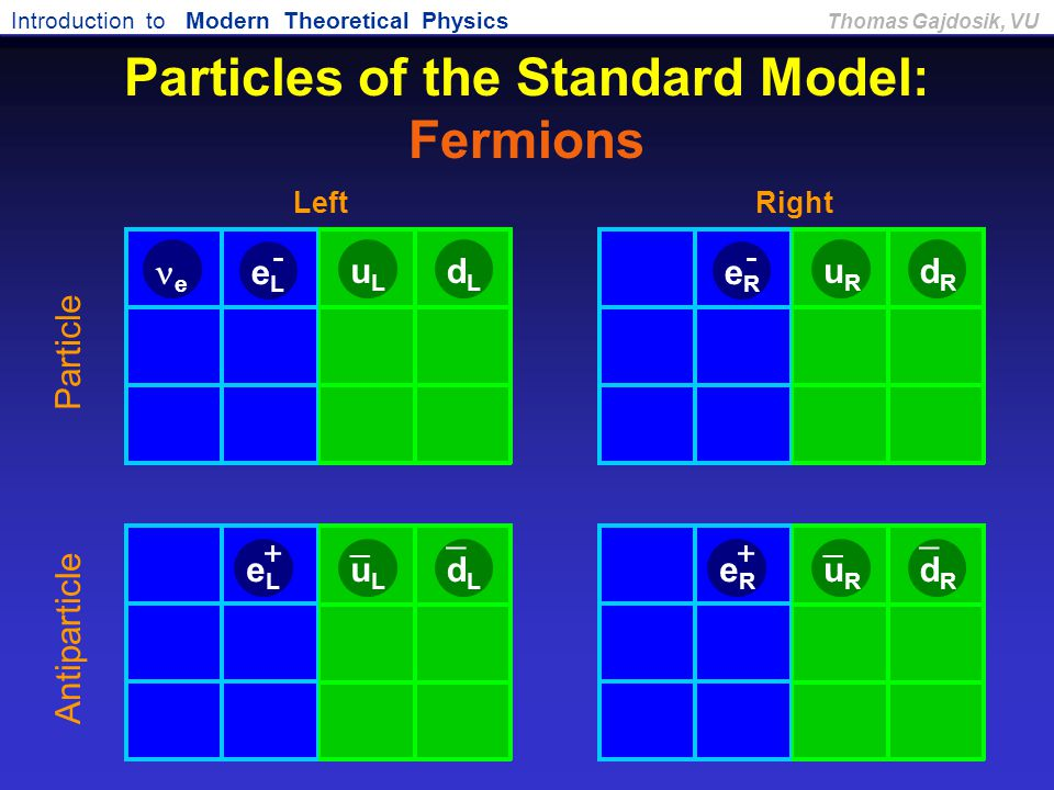 Particles of the Standard Model: Fermions