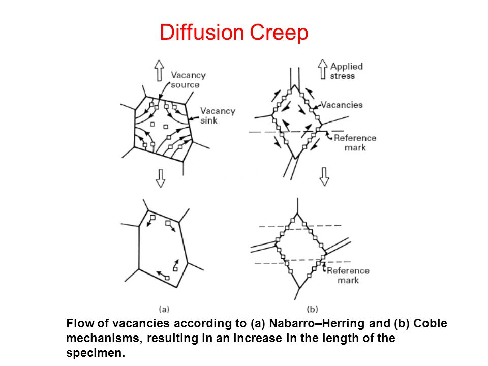 Diffusion Creep Flow of vacancies according to (a) Nabarro–Herring and (b) Coble mechanisms, resulting in an increase in the length of the specimen.