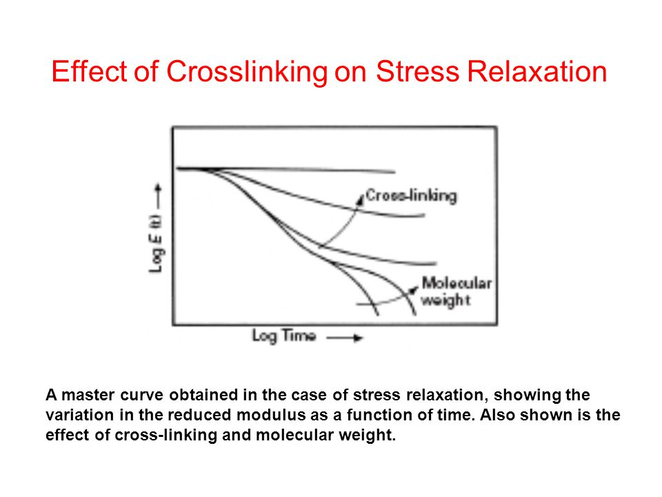Effect of Crosslinking on Stress Relaxation