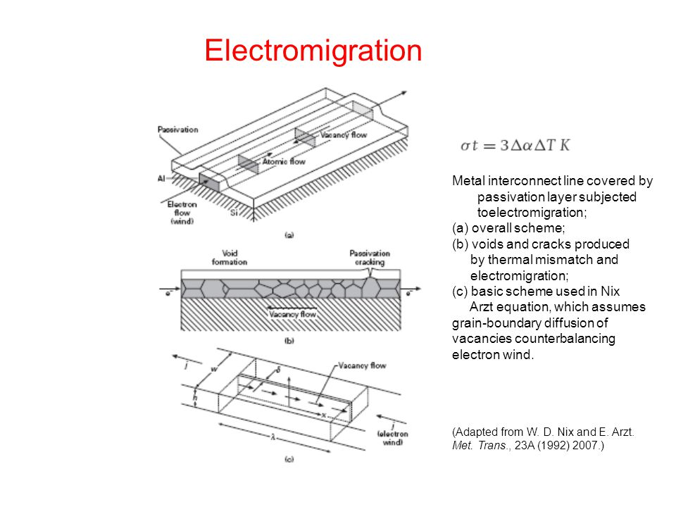 Electromigration Metal interconnect line covered by passivation layer subjected toelectromigration;