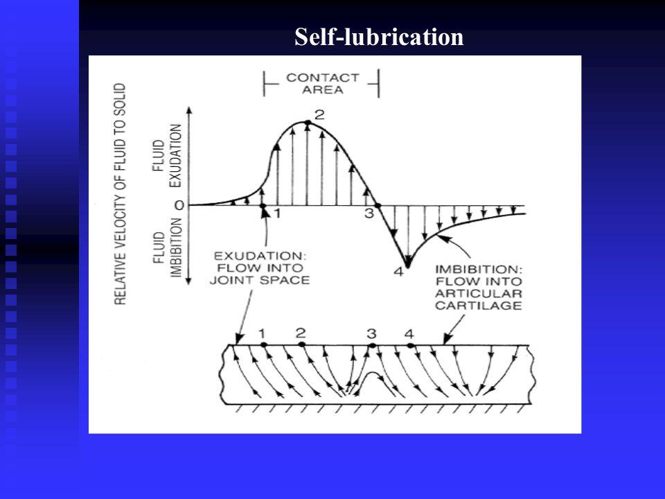 Self-lubrication