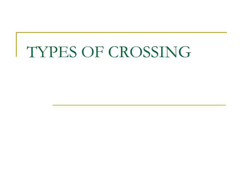 TYPES OF CROSSING
