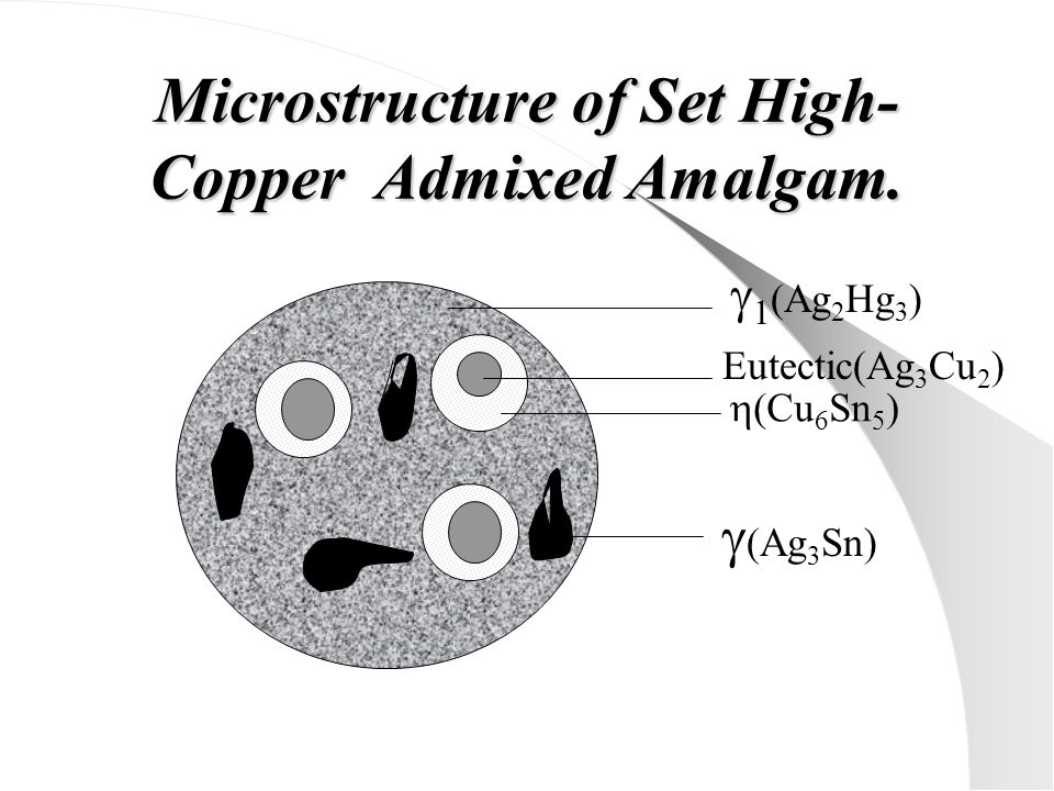 Microstructure of Set High-Copper Admixed Amalgam.