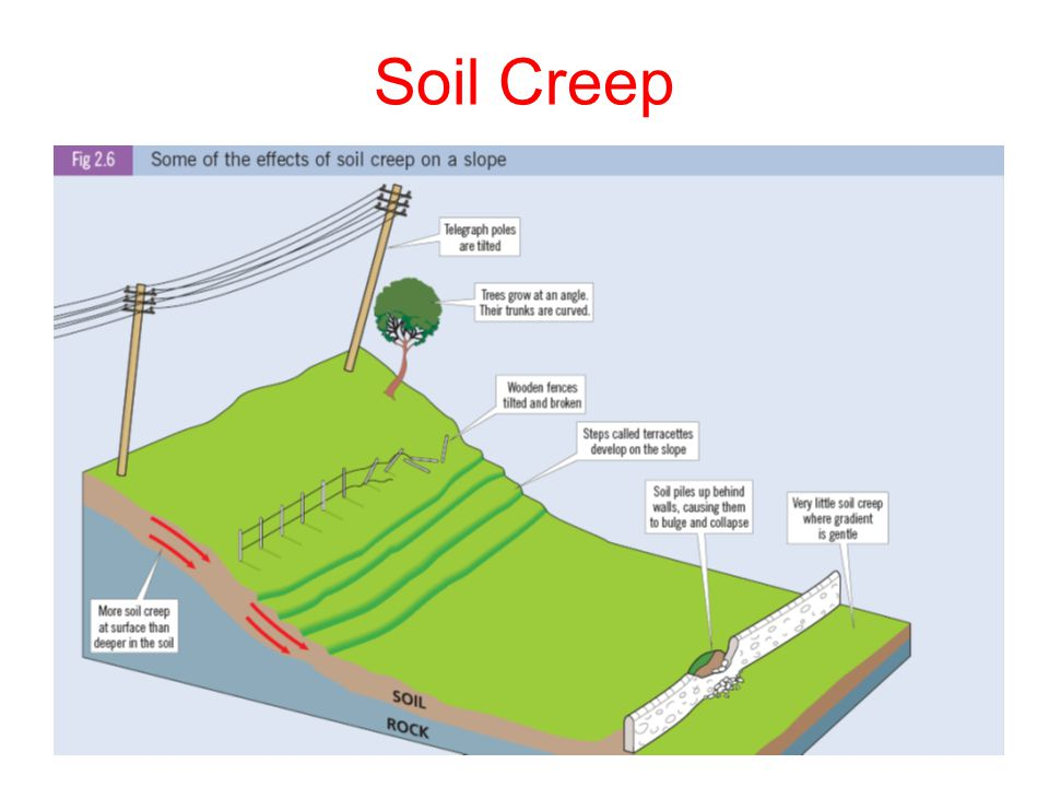 Soil Creep