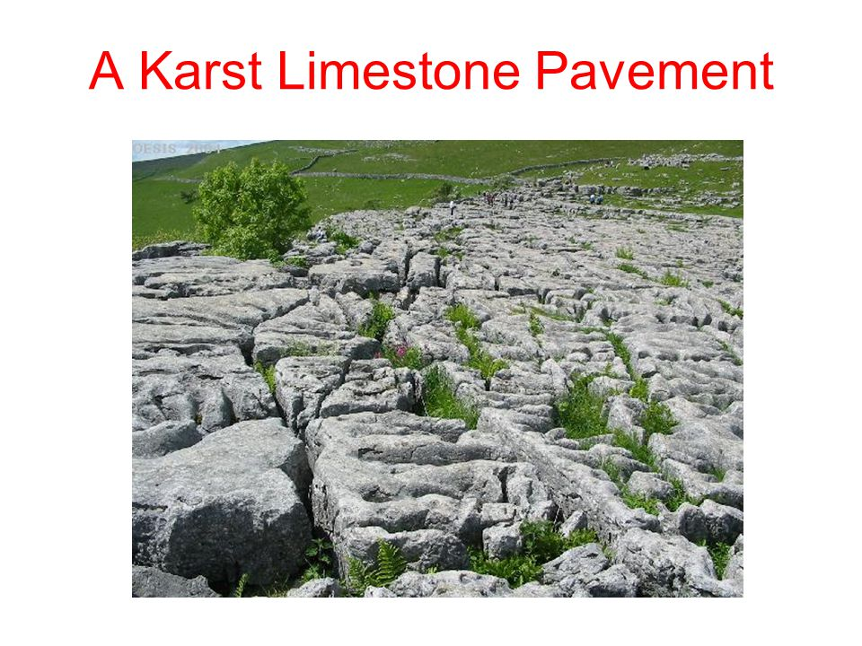 A Karst Limestone Pavement