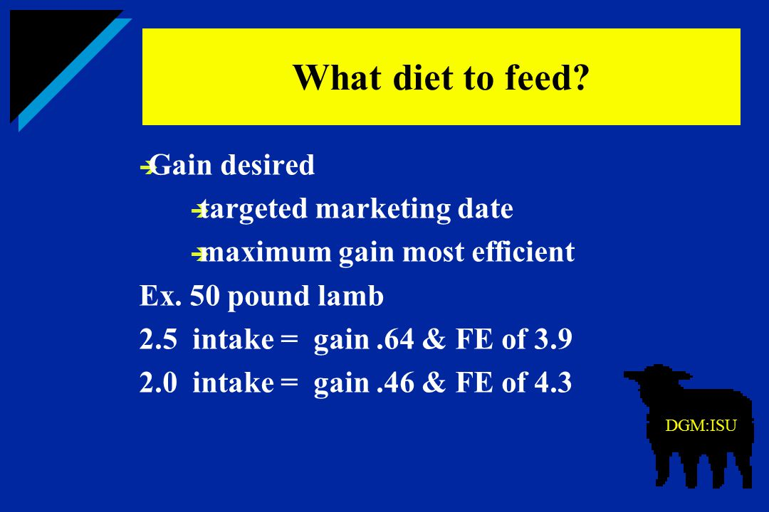 What diet to feed Gain desired targeted marketing date