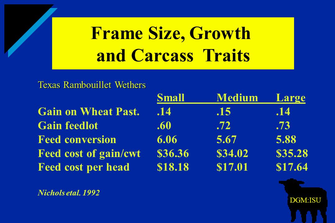 Frame Size, Growth and Carcass Traits