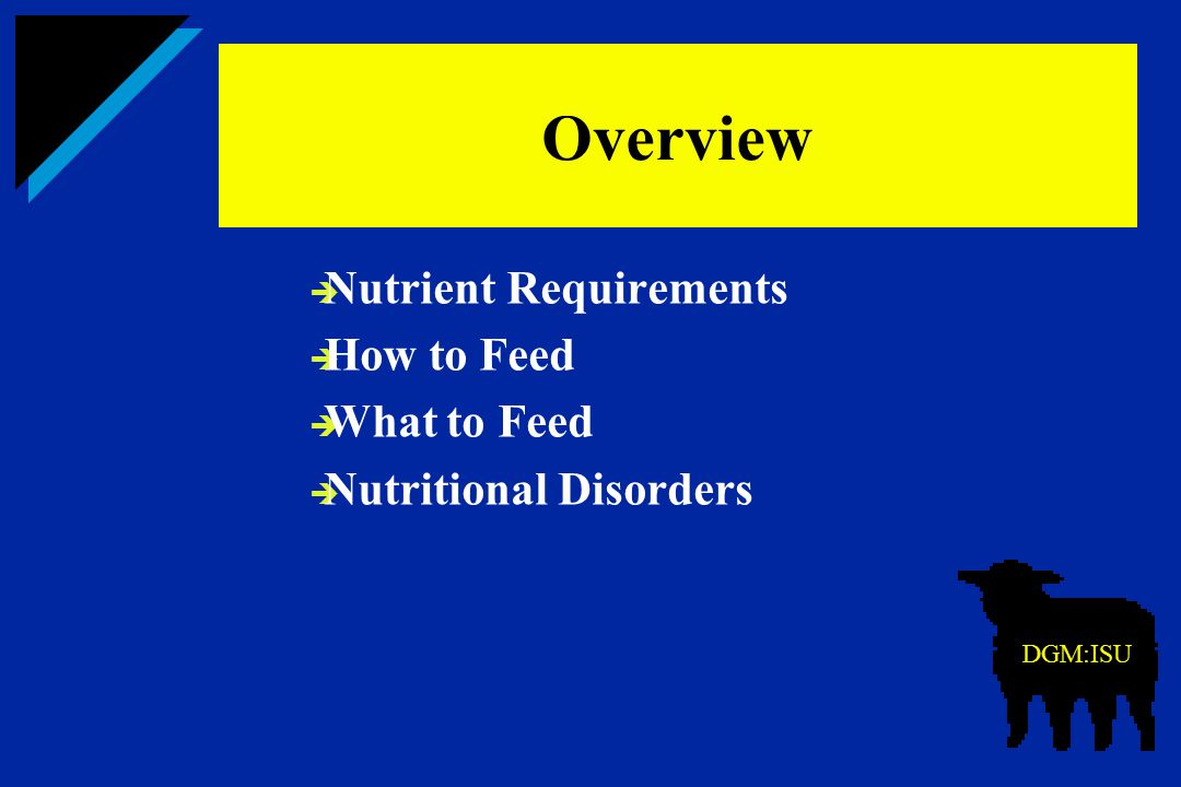 Overview Nutrient Requirements How to Feed What to Feed