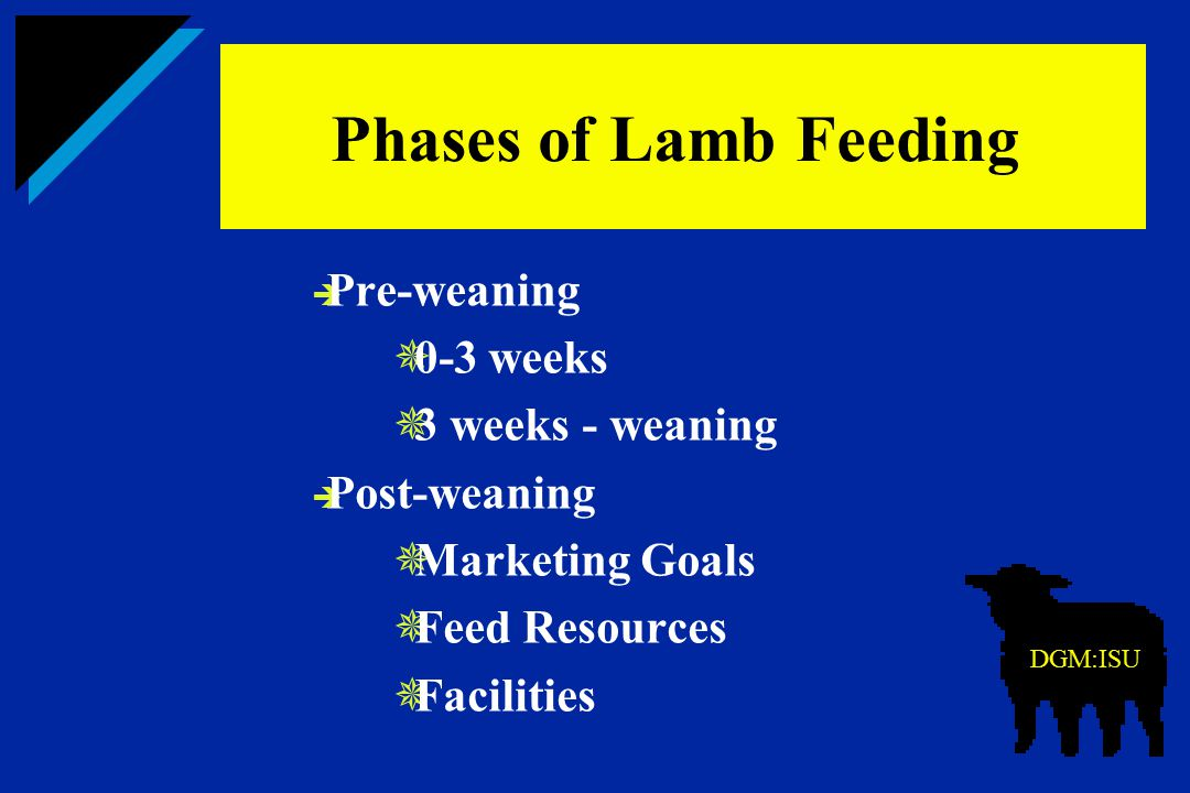 Phases of Lamb Feeding Pre-weaning 0-3 weeks 3 weeks - weaning
